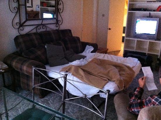 Shadow Ridge Resort Hotel: Sofa bed