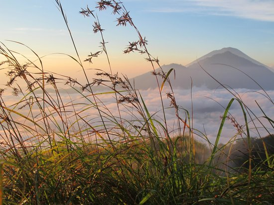 ABAS Bali Driver Private Tour : from the top of mt batur