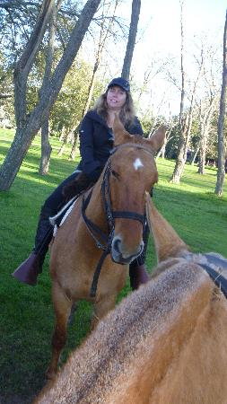 Estancia La Bamba de Areco : Lovely horses (although not the polo ones!)