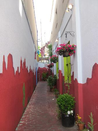 Casa De Luna Poulsbo : Charming Alley Leading to Casa de Luna!