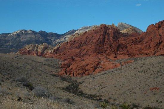 Trailblazers Las Vegas : Red Rock Canyon