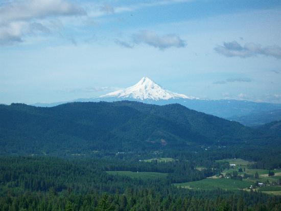 Husum Highlands Bed and Breakfast : Mt. Hood