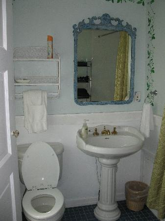 The Dormer House: our bathroom..The Dianaor Diane room..very clean