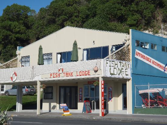 Fish Tank Lodge: The front of the hostel.