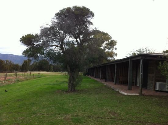 Hunter Valley Resort: vineyard rooms