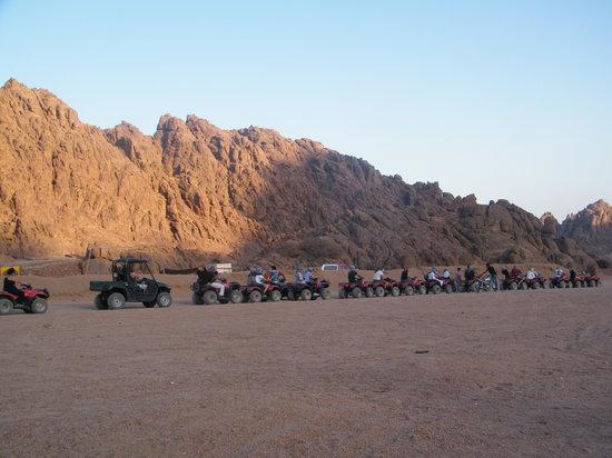 Elegant Voyage Day Tours - Sharm el Sheikh: Ekko