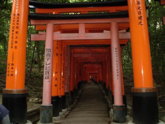 Prefektura Kioto, Japonia: 1000 puertas