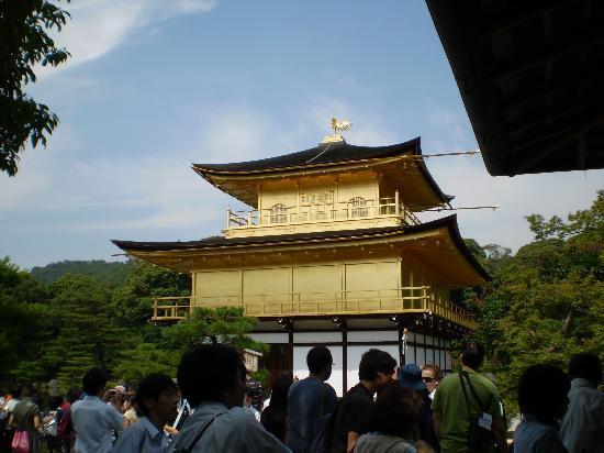Kyoto Prefecture, Japón: templo dorado 1