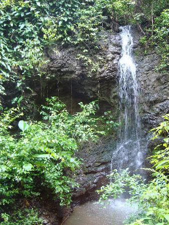 Tulemar Bungalows & Villas: Trails waterfall