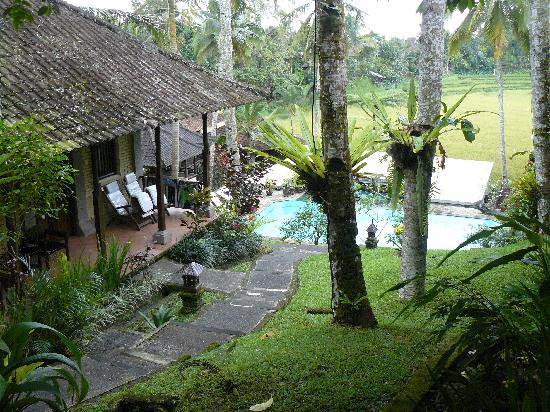 Cempaka Belimbing Villas: Our bungalow and view over the pool and sawa's