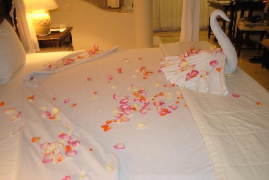 El Dorado Royale, by Karisma : Placed in our room on our wedding night in the El Dorado Royale Suite