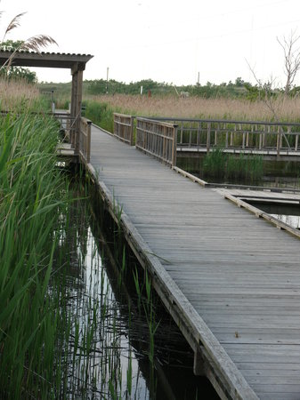 Meadowlands Conservation Trust Photo