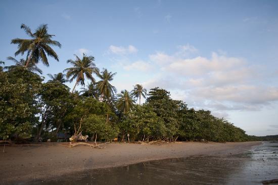 Le Passe-Temps: Vue 4 de la plage