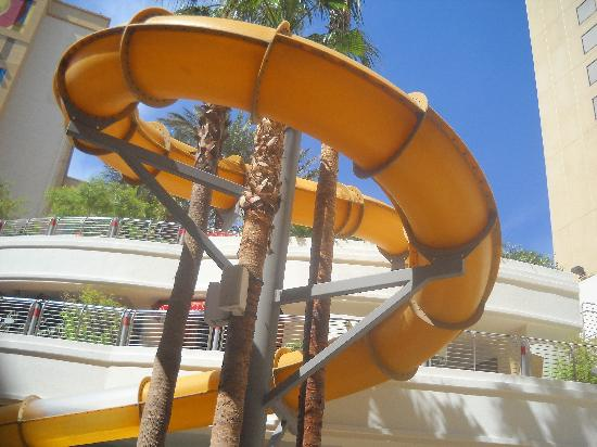 Water Slide Fun Picture Of Golden Nugget Hotel Las Vegas Tripadvisor