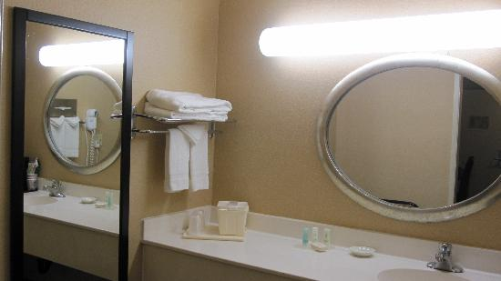 Comfort Inn Near Warner Center: Bath/Vanity