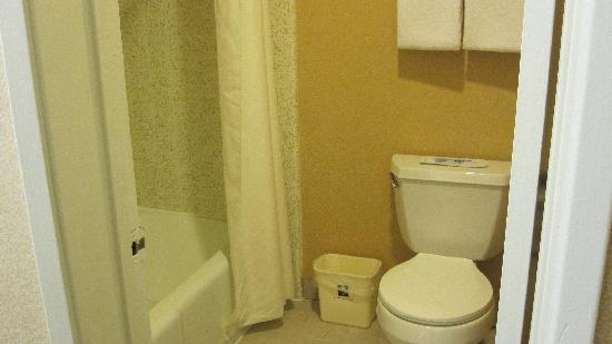 Comfort Inn Near Warner Center: Toilet/Shower