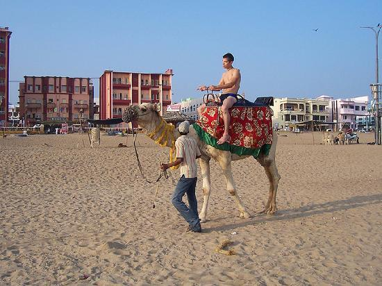 Camel Ride at Puri Beach