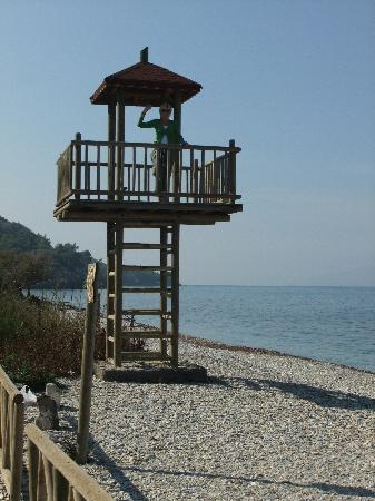 Güzelçamlı, Türkiye: Milli park
