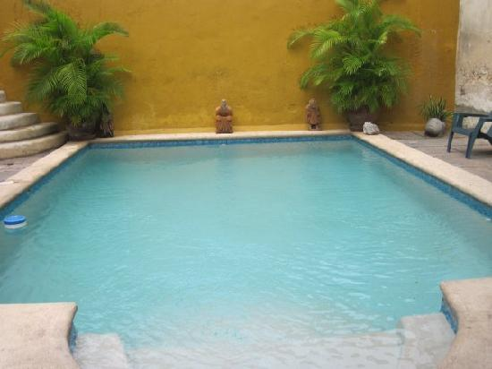 Luz En Yucatan : The swimming pool