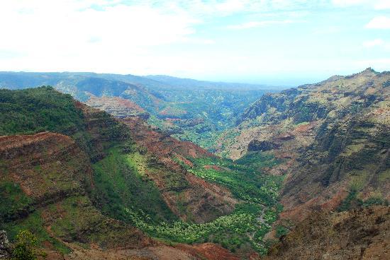 Waimea Canyon: Waimea