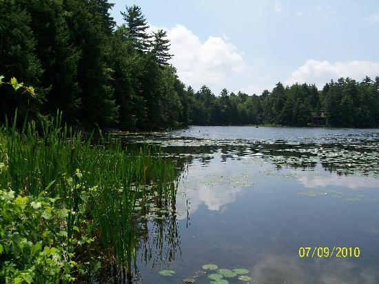 Half Moon State Park: View of pond at Half Moon