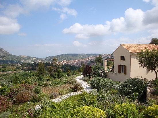 Eliathos Archanes Residence Houses: the view from our terrace