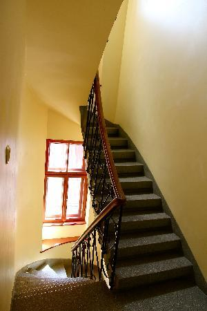Red Nose : Beautiful stairs in the Hostel