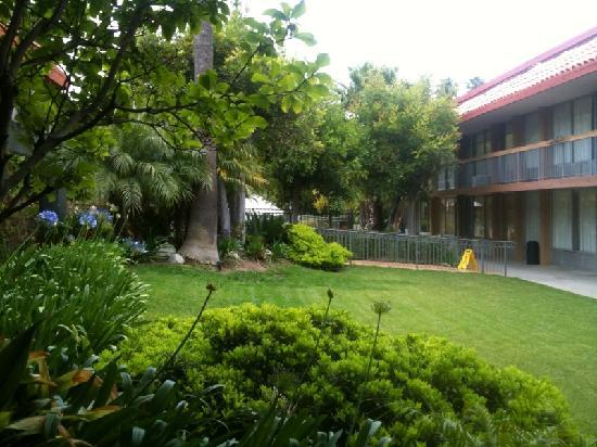 more green - Picture of Palm Garden Hotel, Thousand Oaks - TripAdvisor