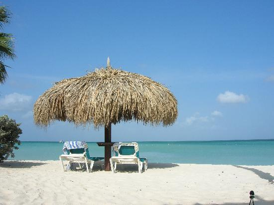 Palm - Eagle Beach, Aruba: Ahhhhhhhruba
