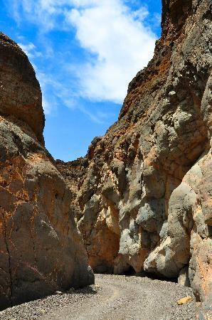 Titus Canyon : The Canyon