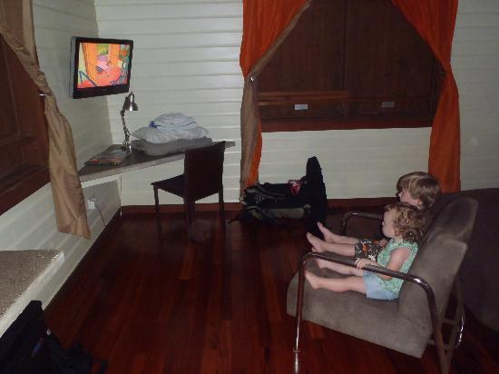 Pagua Bay House Oceanfront Cabanas: Curious George in Dominica