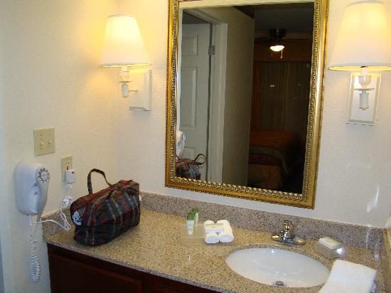 Homewood Suites by Hilton Dallas-Arlington: Vanity area outside the bathroom