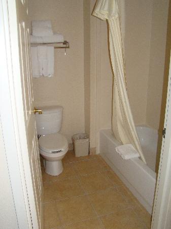 Homewood Suites by Hilton Dallas-Arlington: Bathroom