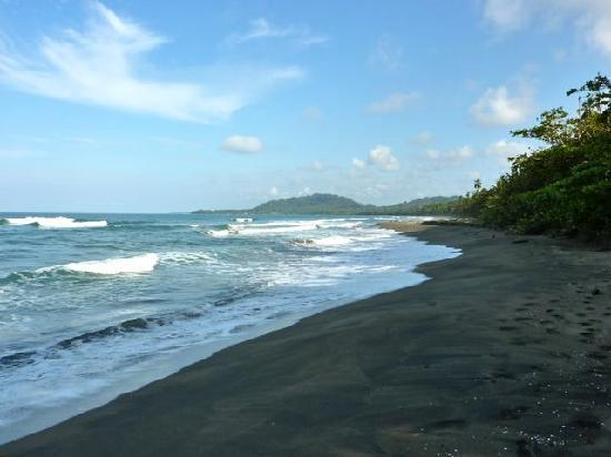 Puerto Viejo, Kostaryka: Playa Negra