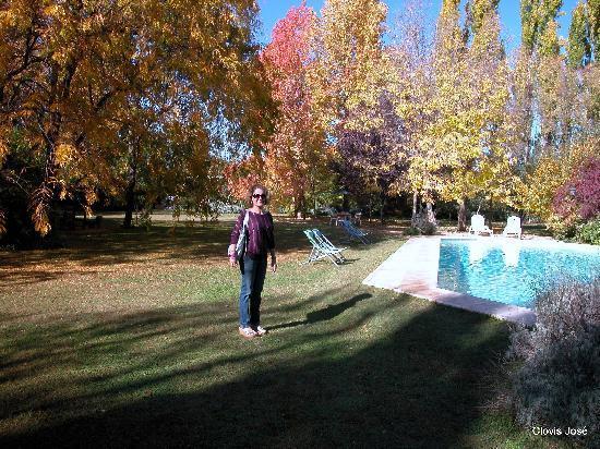 Casa Glebinias: Inner garden