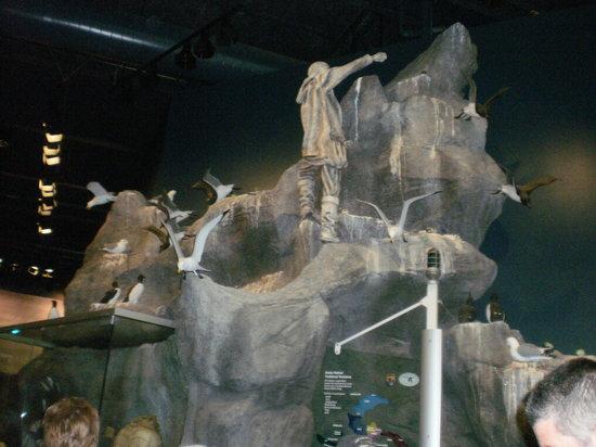 Alaska Islands and Ocean Visitor Center : Exhibit