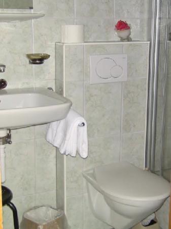 Hotel Helvetia: Bathroom