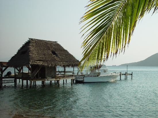 Plantation Beach Resort : The Dive Boat & Dock