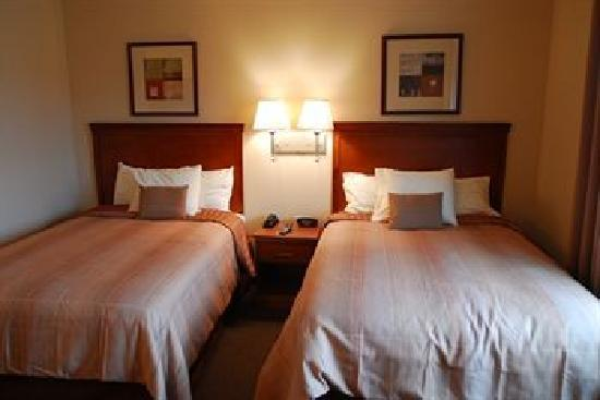 Candlewood Suites Extended Stay: Two Bed Sudio Suite