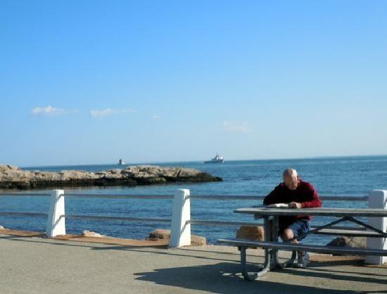 "Groton, CT: 'Benched"" at Eastern Point beach"