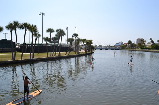 Three Brothers Boards Dolphin and Manatee Paddle Board Tours