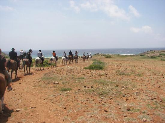Rancho Notorious Aruba: A slight view of the ocean with 9 of the 15 that accompanied us