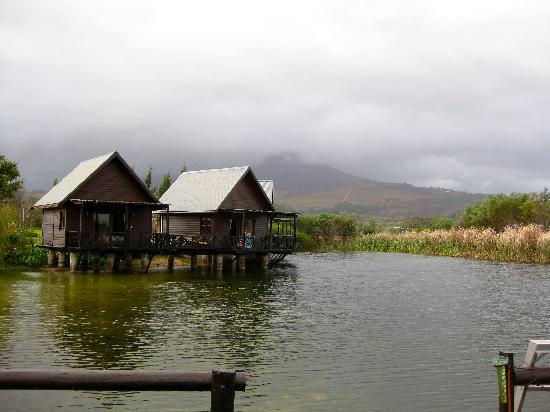 Papyrus Lodge: Lovely cabins on the water