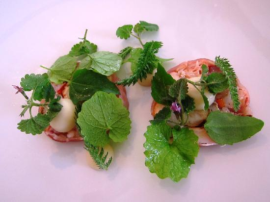 Henne, Denmark: 1st course of terrine of lobster and sweetbreads with parsnip puree
