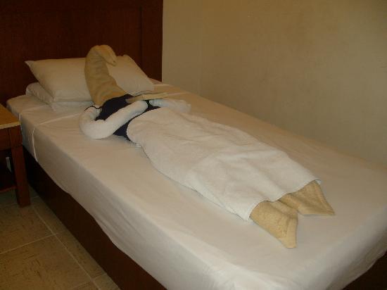 Falcon Hills Hotel: Amazing Towelart