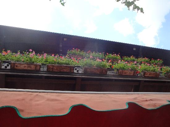 Restaurant Wolf: Looking UP, from patio to flowerboxes