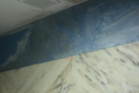 La Casa del Pozo Santo : Mildew in the bathroom