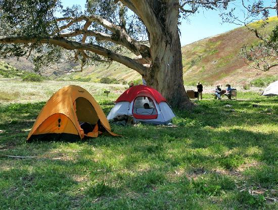 Ventura, Califórnia: Upper Scorpion Campground, Santa Cruz Island, Photo by Doug Mangum