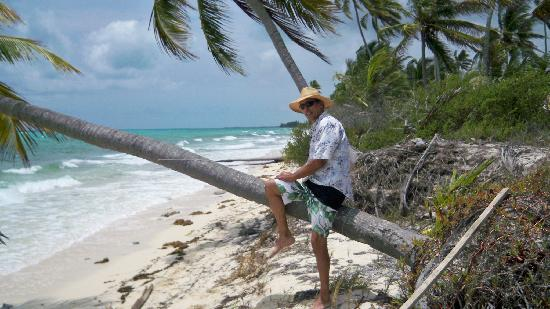 Emerald Palms by the Sea: beach north of emerald palms, s. andros isl, bahamas1