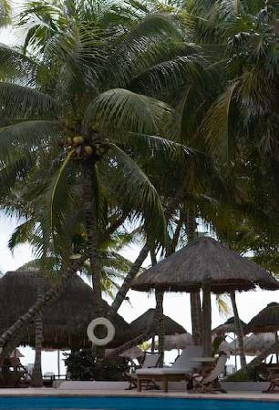 Mahekal Beach Resort: Las Palapas pool area.